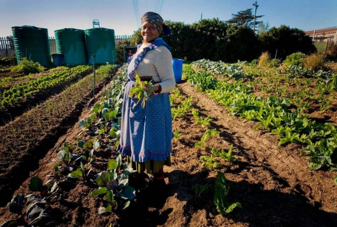 South Africa's National Assembly supports land expropriation without compensation