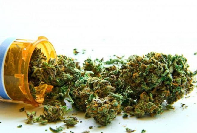 South Africa to become first African country to legalise cannabis