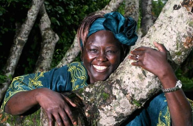 Wangari Maathai Foundation aims to keep her spirit and values alive with KSh4 billion museum