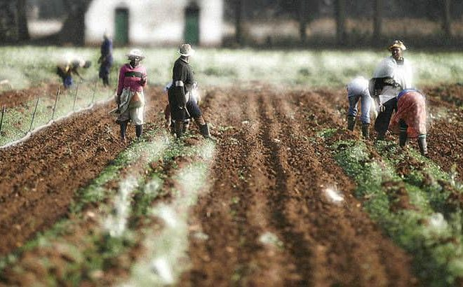 South Africa: Expropriation Bill sails through National Assembly