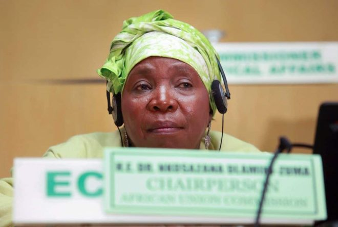 Replacing Dlamini Zuma won't be business as usual