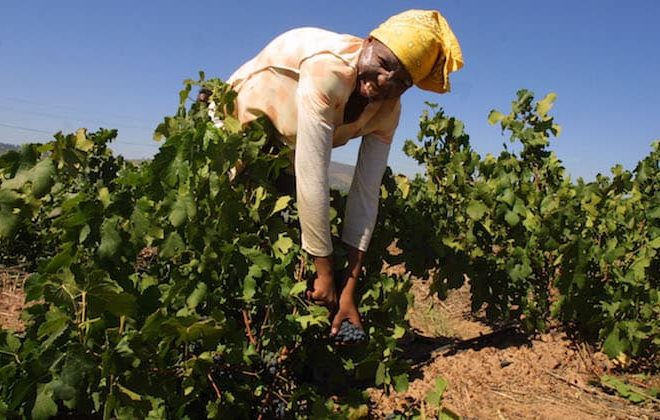 Namibia holds land conference to discuss land expropriation