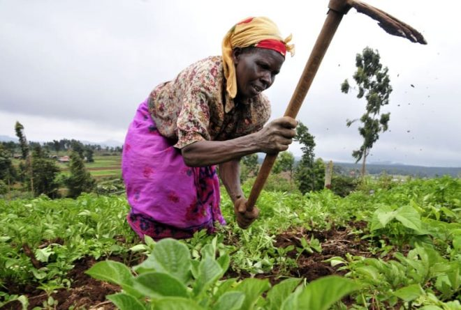 Reaping Africa's demographic dividend