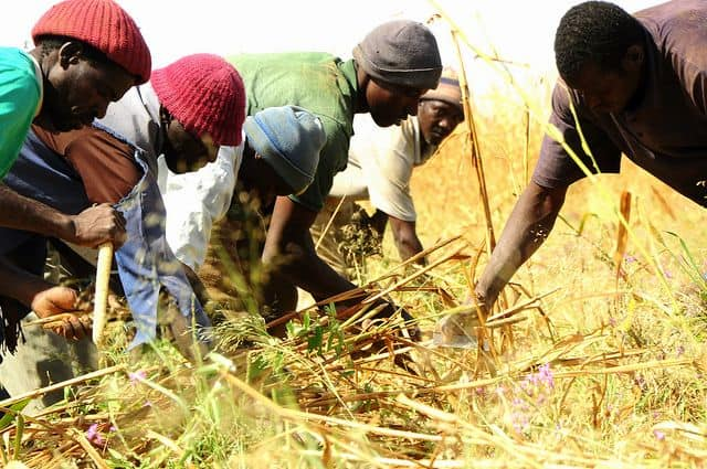 """Developing a work attitude for Africa: the """"why"""" and the """"how"""" in context of Climate Change"""