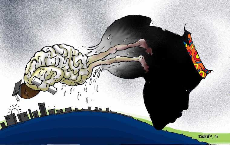 The extent of Africa's brain drain worrying. Cartoon: Mike Asukwo.