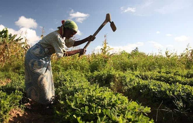 Why merely owning land isn't enough to empower Africa's women farmers