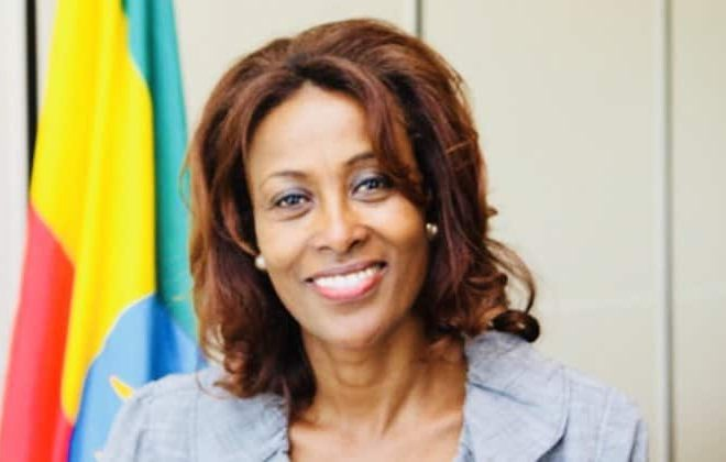 Ethiopia appoints Meaza Ashenafi as first woman Federal Supreme Court President
