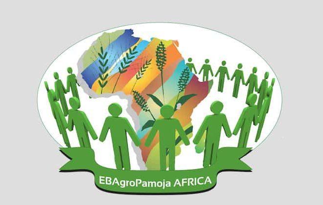 EBAgroPamoja App- Africa's 1st ever wealth creation tool developed through Innovative Volunteerism