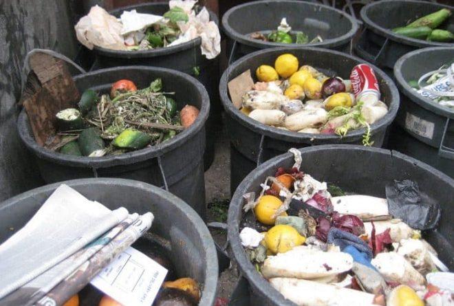 African entrepreneurs fighting food waste