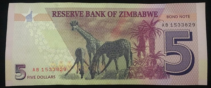 Zimbabwe Dollar Reinstated As Sole