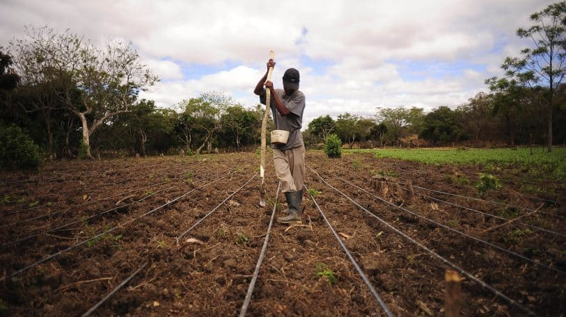 Artificial Intelligence providing solutions for African farmers hit by climate crisis